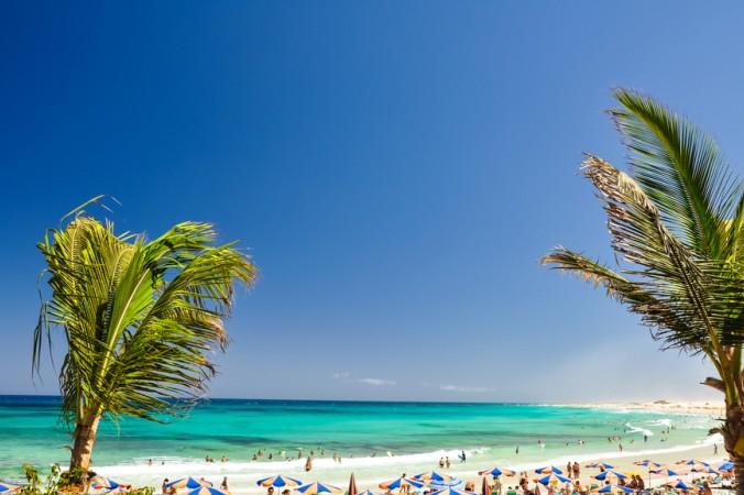 """Auch die Kanaren haben schöne Strände zu bieten, so zum Beispiel der """"Corralejo Beach"""" auf Fuerteventura. (#5)"""