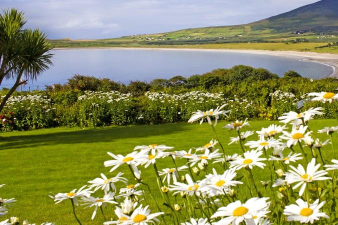 In der Nähe von Dingle in Irland bietet der Sandy Beach eine tolle Gelegenheit rundum zu entspannen. (#7)